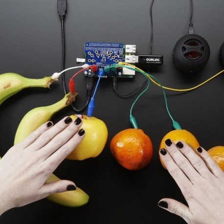 Adafruit Capacitive Touch HAT for Raspberry Pi
