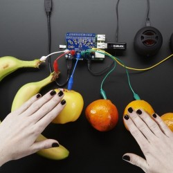 Adafruit Capacitive Touch HAT for Raspberry Pi - Corzotech